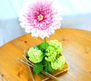 (日本語) flower day @ あなたの公-差-転